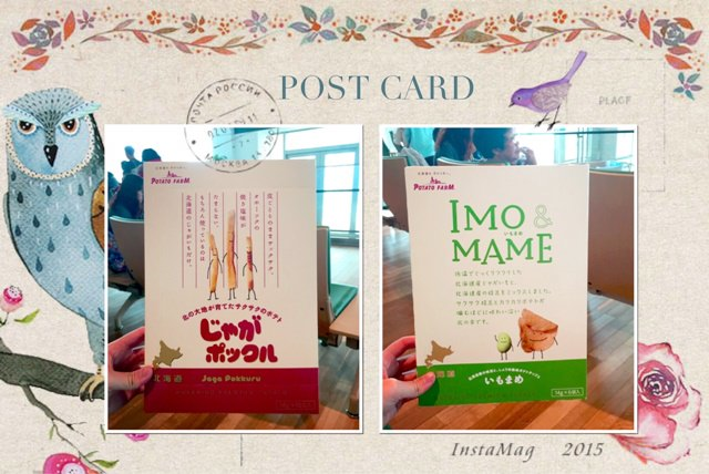 北海道 ▌日本旅行 家族一同出遊 吃飽悠閒的旅行 Day5 #LIVE旅行日記
