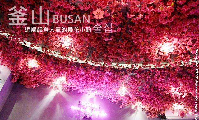 韓國 ▌釜山食記:西面站 요정 IZAKAYA POCHA 抬頭就是滿滿櫻花好浪漫