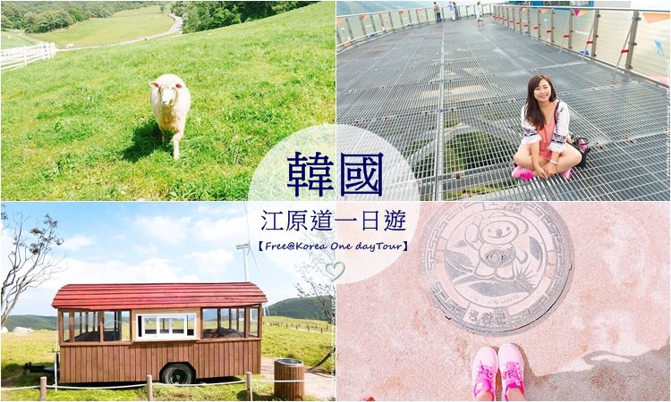 韓國江原道 ▌Alpensia滑雪場、大關嶺天空牧場、孝石文化村【Free@Korea一日遊】