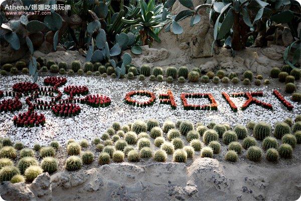 韓國 ▌濟州島自由行 : 中文觀光區。如美地植物園여미지 식물원 / 溫室植物園